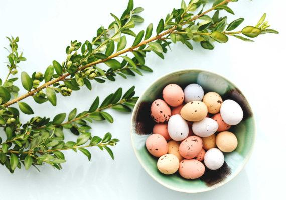 зеленая ветка и тарелка с пасхальными яйцами